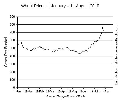 Wheat Prices, 1 January - 11 August 2010