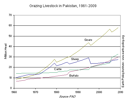 Graph on Grazing Livestock in Pakistan, 1961-2009