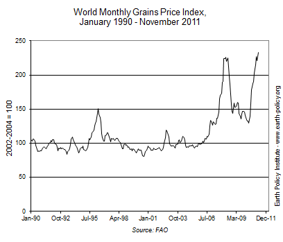 Graph on World Monthly Grains Price Index, January 1990 - November 2011
