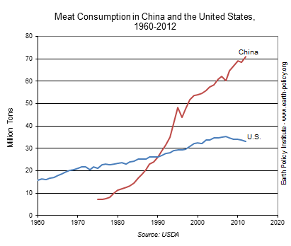 Graph on Meat Consumption in China and the United States, 1960-2012