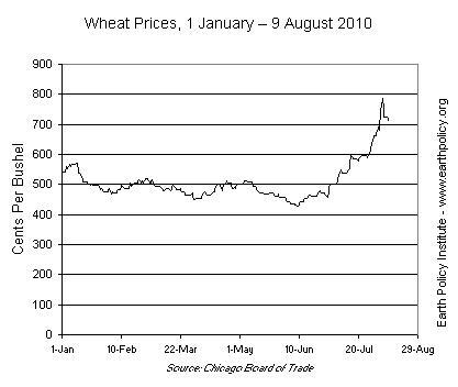 Wheat Prices, 1 January – 9 August 2010