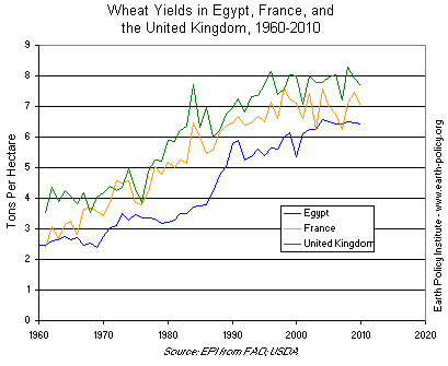 Graph on Wheat Yields in Egypt, France, and the United Kingdom, 1960-2010 