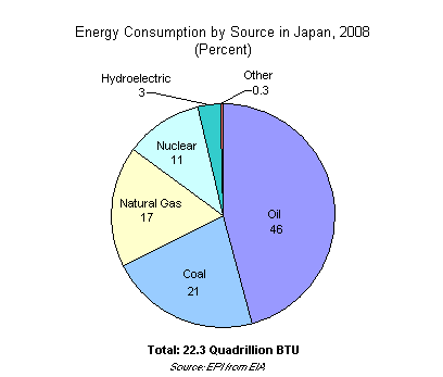 Graph on Energy Consumption by Source in Japan, 2008