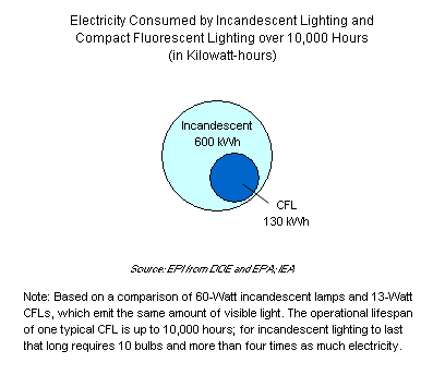 Graph on Electricity Consumed by Incandescent Lighting and Compact Fluorescent Lighting over 10,000 Hours (in Kilowatt-hours)