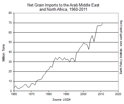 Net Grain Imports to the Arab Middle East and North Africa, 1960-2011